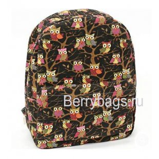Рюкзак молодежный 130799 Owl