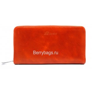 Винтажное портмоне на молнии Bristan Wero 0569703 - Shiner