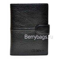 Обложка для паспорта и автодокументов Bristan Wero 117223