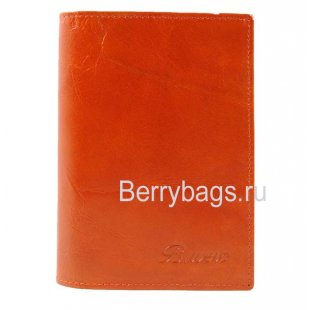 Обложка для паспорта с картами Bristan Wero 155196 Raien
