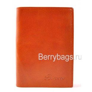 Обложка для паспорта и автодокументов Bristan Wero 1721-09 Brown