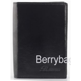 Обложка для паспорта и автодокументов Bristan Wero 17391 Black