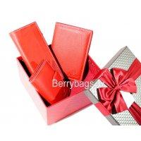 Женский подарочный набор из кожаных аксессуаров Bristan Wero S-719 -Paradissa