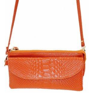 Fancy bag 202-09 Женская сумочка клатч