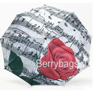 Зонт женский Rain city 23746 Music